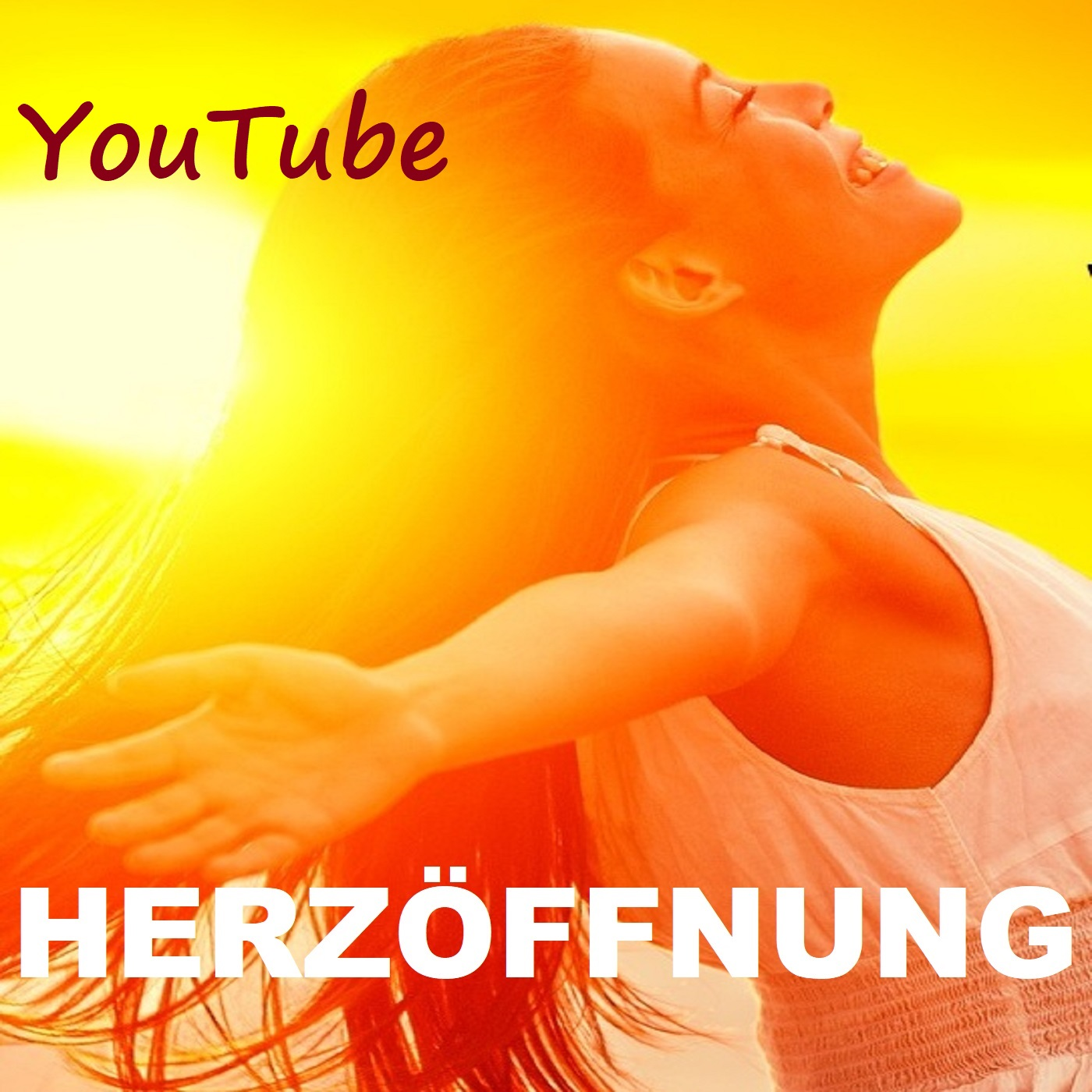 Herzöff.YouTube