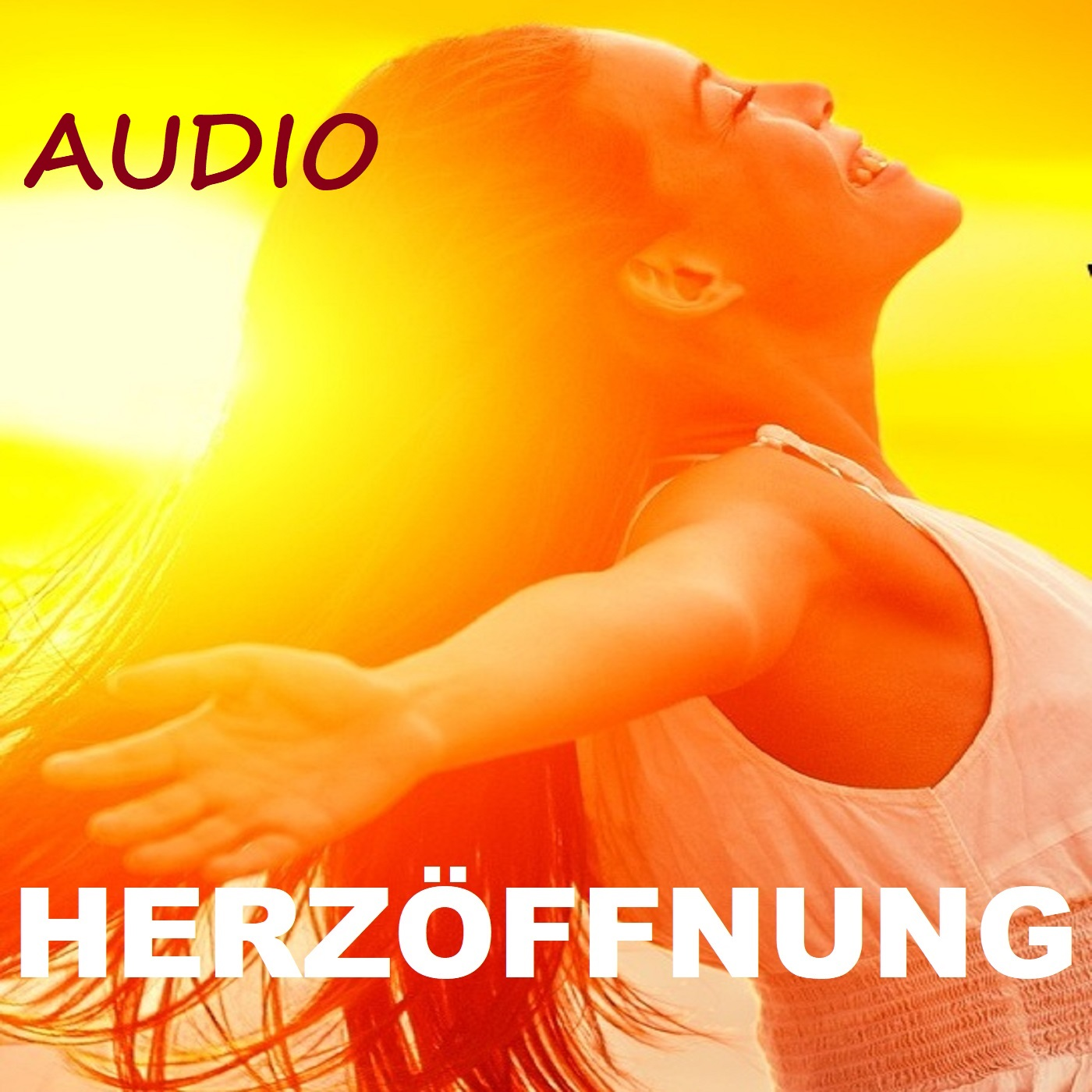 Herzöffn.Audio